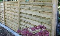 ограда плетёнка